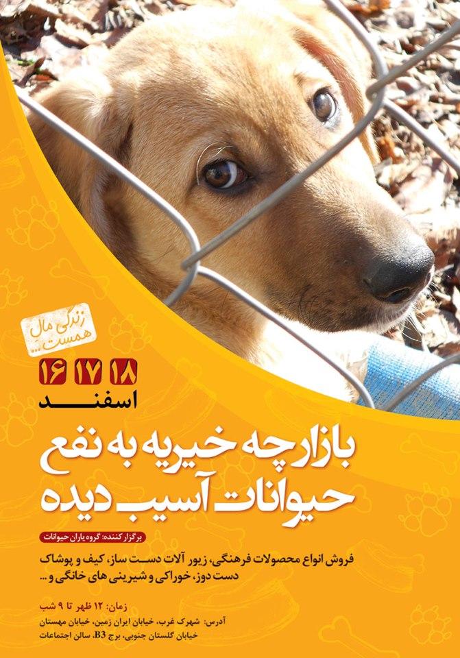 بازارچه خیریه به نفع حیوانات آسیب دیده