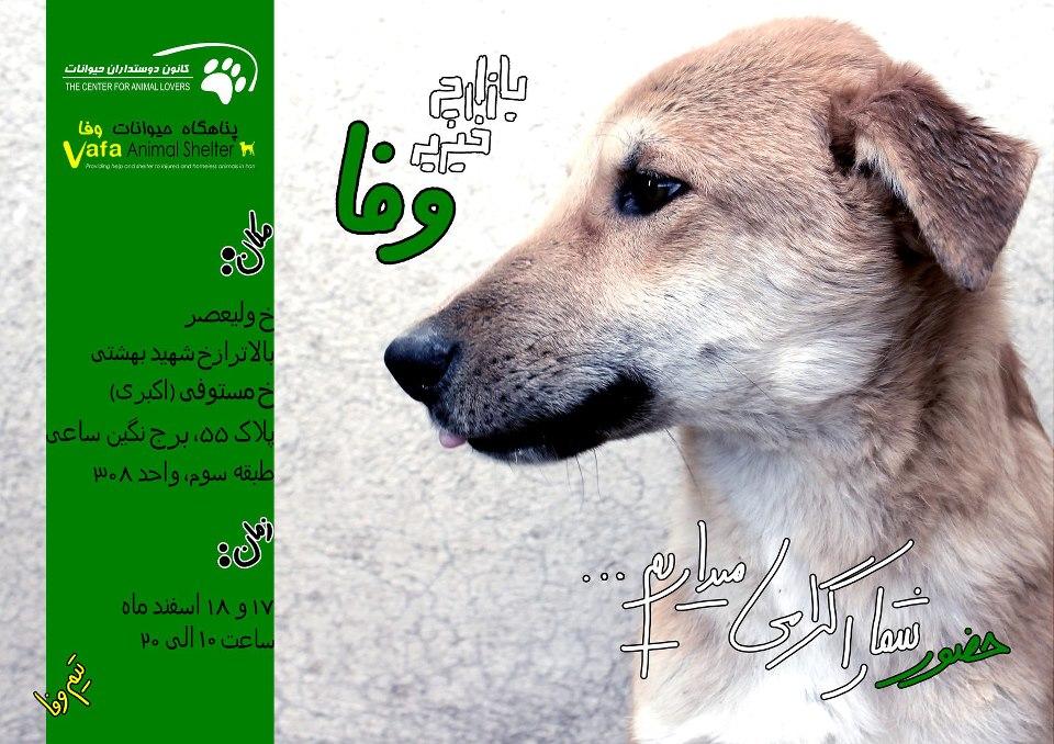 پوستر بازارچه خیریه خانه وفا سگها