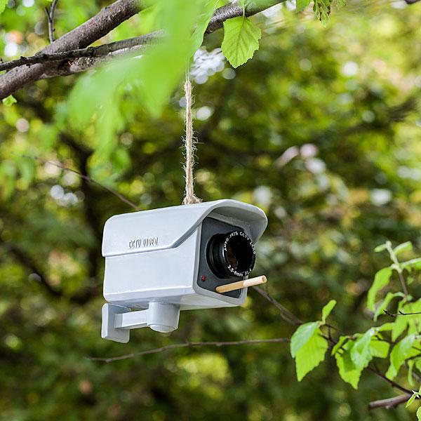 1cee_security_camera_birdfeeder_env1